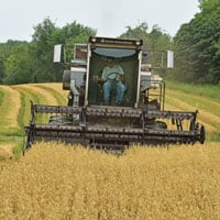 Combining Gehl-Oats 7.18.20 • Weatherbury Farm 2020 Grain Tracker