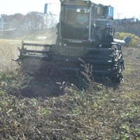 Harvesting Merlot • Weatherbury Farm 2020 Grain Tracker