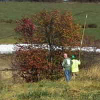 Lifting fiber optic cable • Weatherbury Farm 2020 Grain Tracker