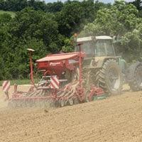 Planting Merlot Beans2020 • Weatherbury 2020 Grain Tracker