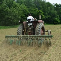 Rotary Hoeing Corn 6.8.19 • Weatherbury Farm Grain Tracker