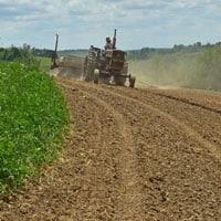 Planting Wapsie Valley Corn 5.27.20 • Weatherbury Farm 2020 Grain Tracker