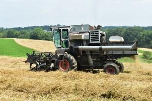 The harvest is underway at Weatherbury Farm